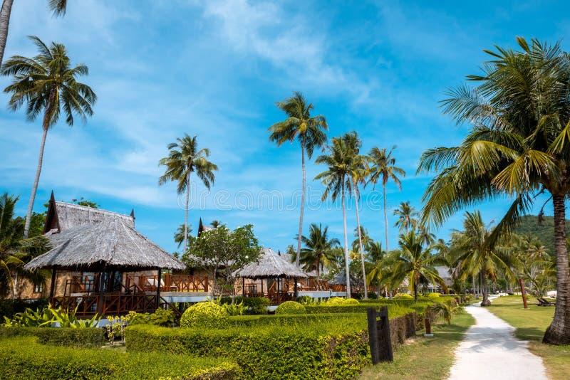 平房小屋和棕榈酸值发埃发埃泰国 免版税图库摄影