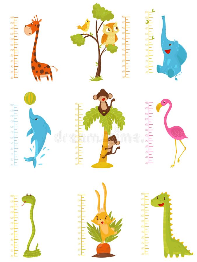 平的传染媒介套测量的统治者哄骗与逗人喜爱的动物和鸟的成长 装饰米墙壁贴纸为 向量例证