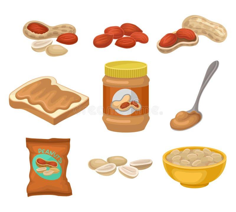 平的传染媒介套花生产品 整个和被剥皮的坚果 与甜黄油,玻璃瓶子和匙子的敬酒的面包 向量例证