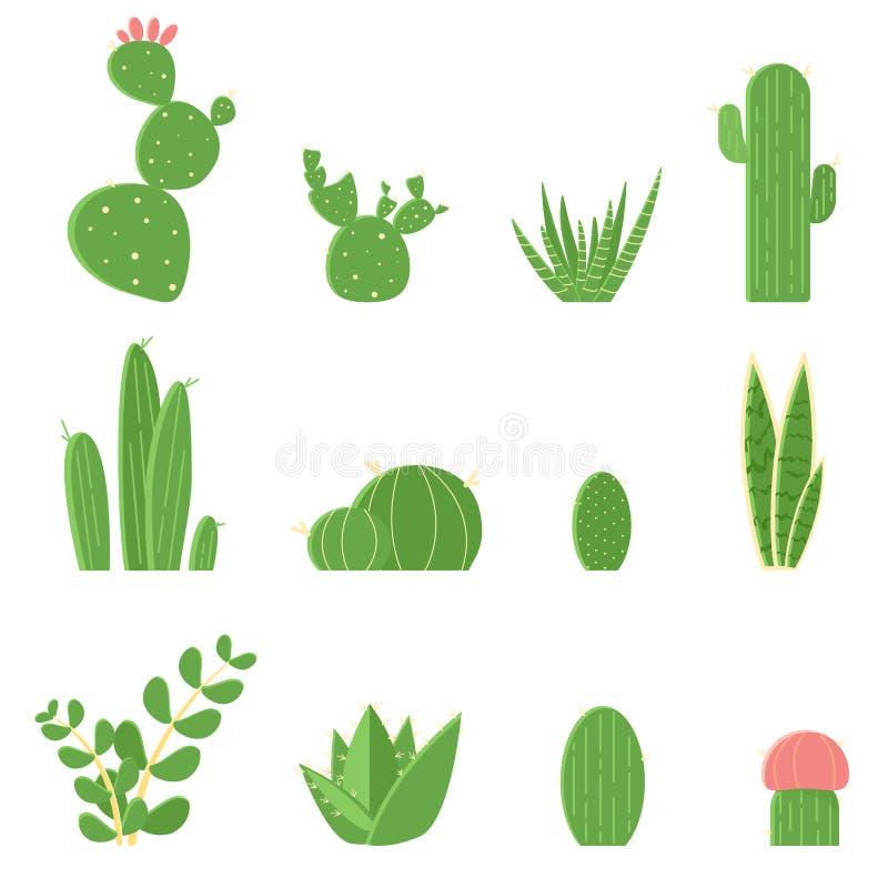 平的传染媒介套仙人掌和多汁植物 仙人掌的动画片例证 向量例证