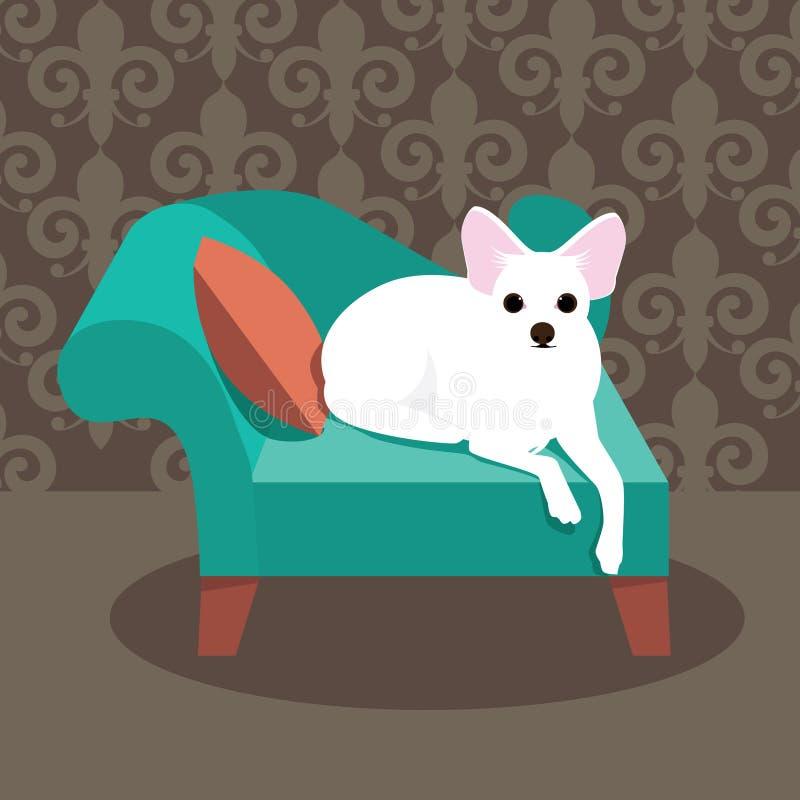 平的在她的椅子的设计白色奇瓦瓦狗 向量例证