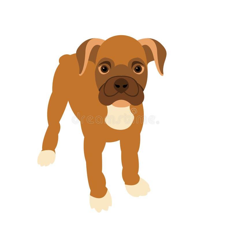 平的小狗拳击手样式颜色 皇族释放例证