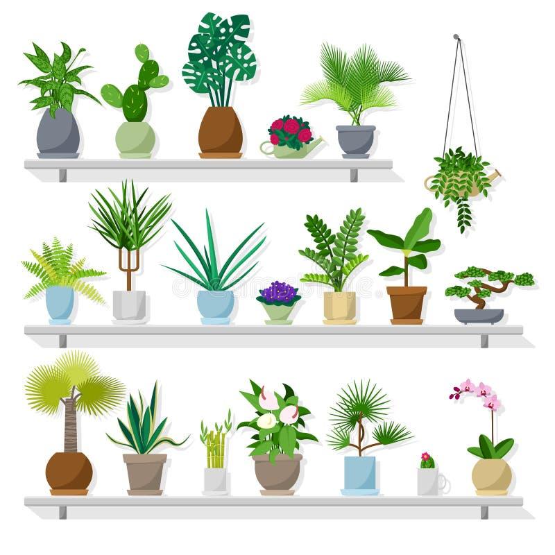 平的样式的盆栽植物 皇族释放例证
