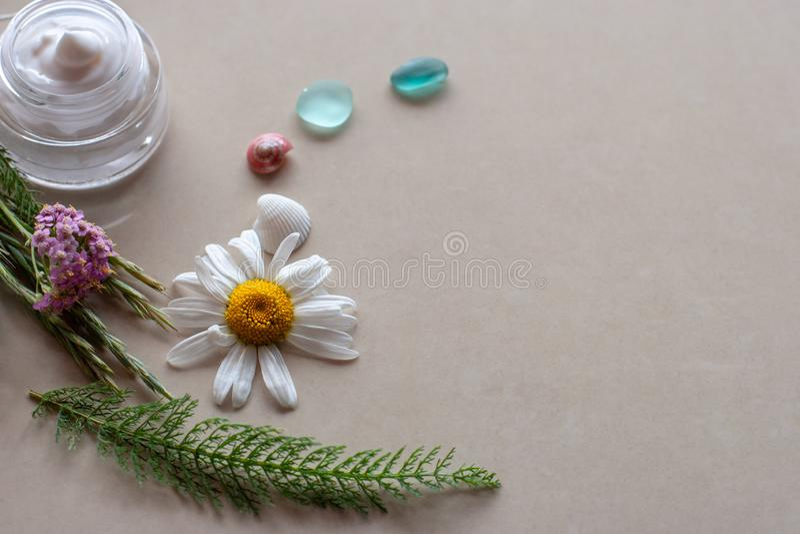 平的看法 有花和一个瓶子的植物白色奶油、两三块玻璃和壳 库存照片