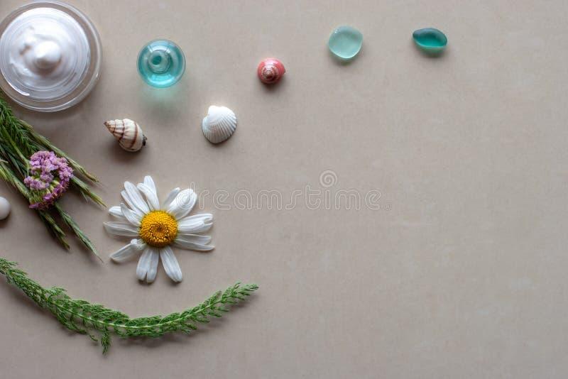 平面视图 Spa静物 罐子里的白色奶油,靠近绿色植物的茎、花和带石头的贝壳 图库摄影