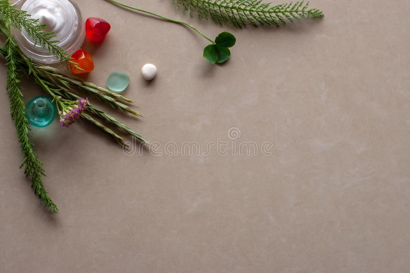 平的看法 黏附在角落外面的植物的汇集,与一个瓶子奶油和多彩多姿的小卵石一起 免版税库存照片