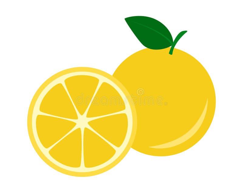 平的象果子黄色葡萄柚 向量例证