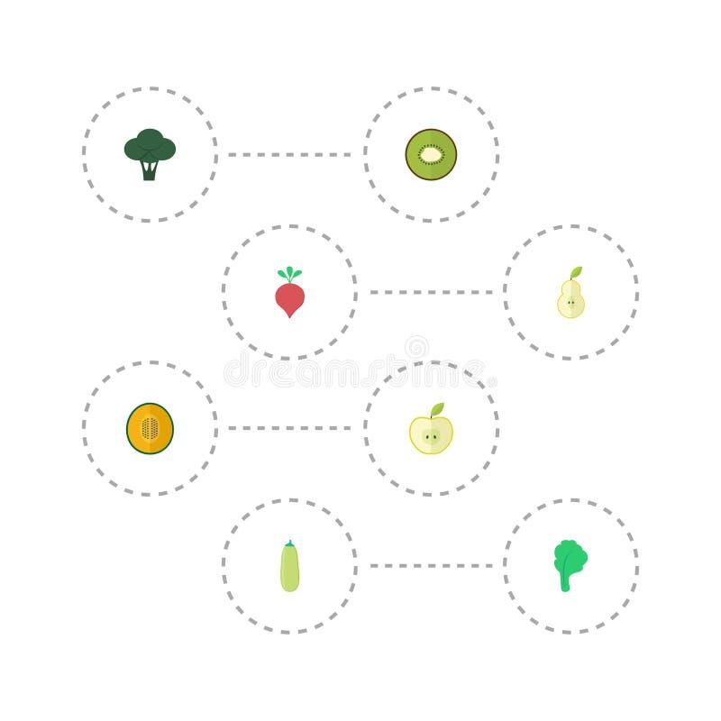 平的象Jonagold,圆白菜、公爵夫人和其他传染媒介元素 套果子平的象标志并且包括瓜 向量例证