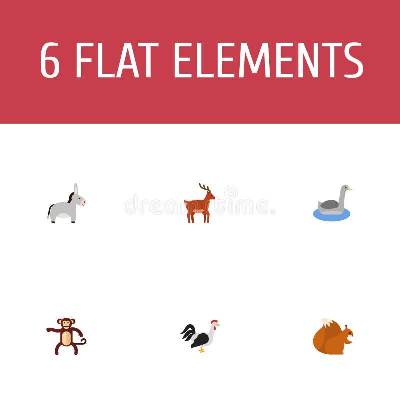 平的象Waterbird,公驴、花栗鼠和其他传染媒介元素 向量例证