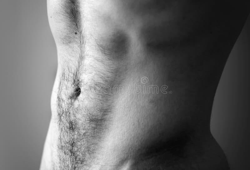 平的运动的男性腹部 库存图片