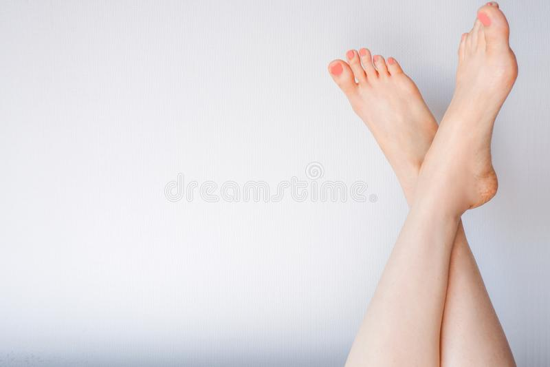 平的长的腿和脚在白色和灰色颜色 妇女脚特写镜头与粉红彩笔修脚的 美丽的年轻人 库存图片