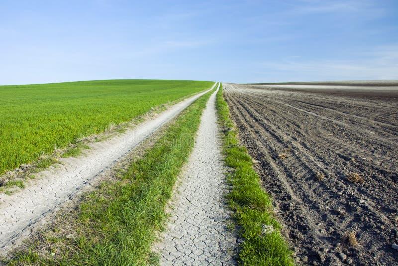 平直的国家干燥路、被犁的领域和绿色草甸 免版税库存照片