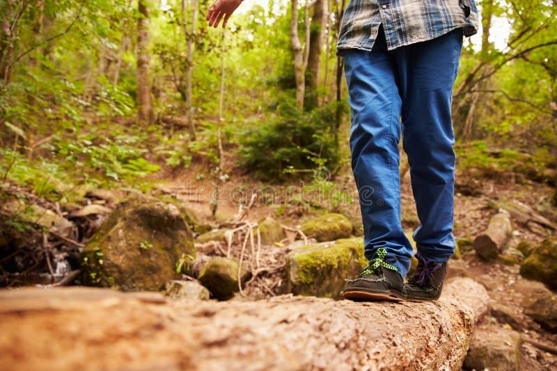 平衡在一棵下落的树的男孩的腿和脚在森林里 图库摄影