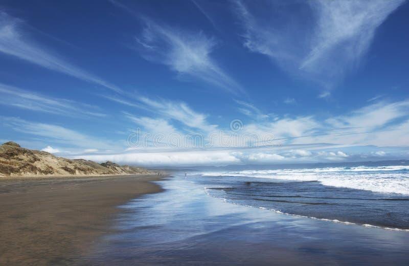 平静和宁静在新西兰 九十个英里海滩,北岛新西兰 普遍的90英里海滩在新西兰 免版税库存图片