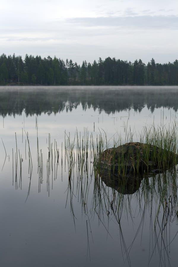 平静和有薄雾的早晨 免版税库存图片