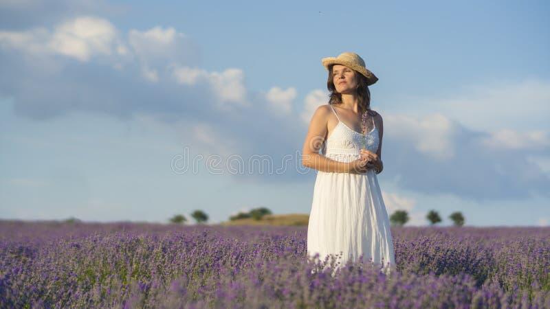 平静和淡紫色 免版税库存照片