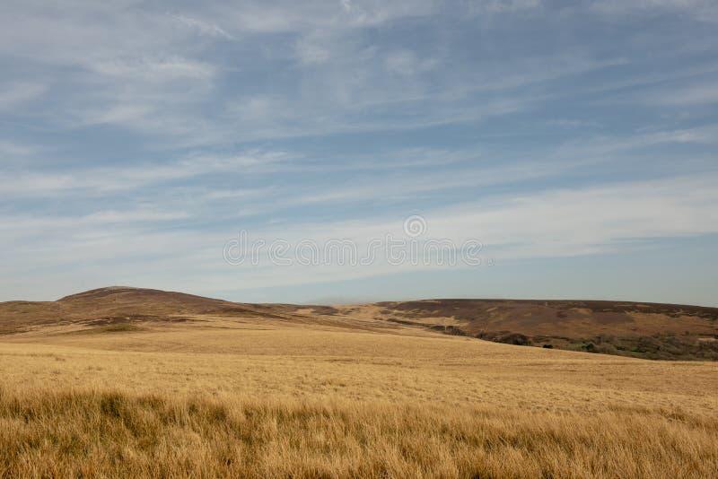 平静的农村原野风景图象 免版税库存图片