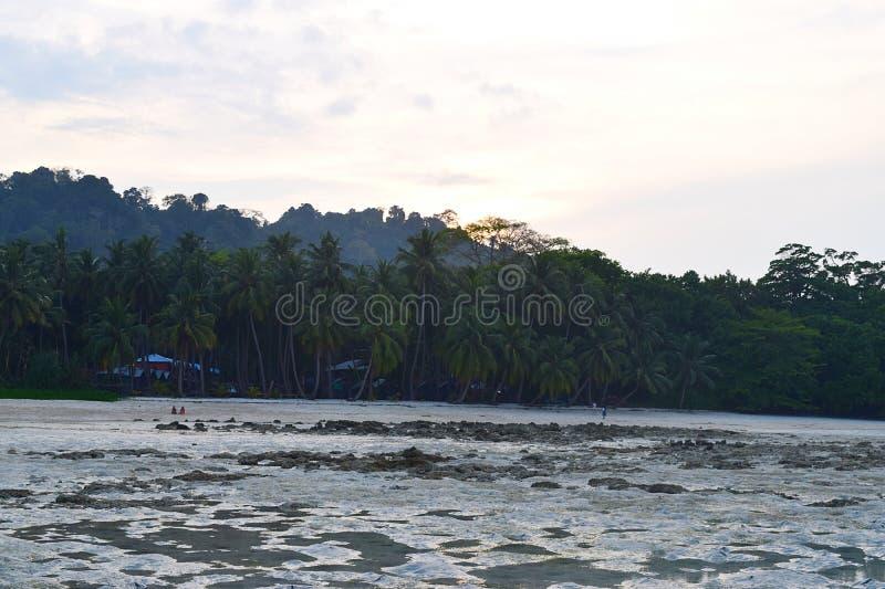 平静的海滩与棕榈树的在小山后的晚上,日落和明亮的天空-维贾伊Nagar海滩, Havelock海岛,安达曼,印度 免版税库存图片