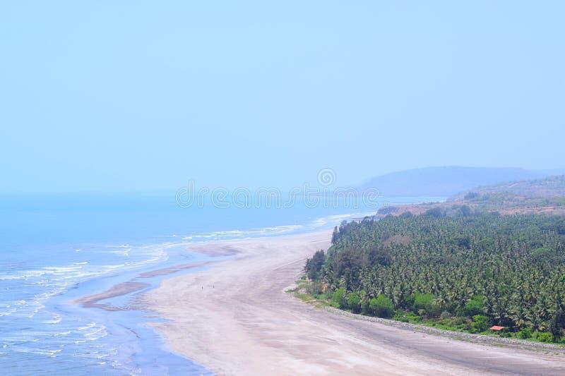 平静的海滩看法与海的挥动与从顶的Anjarle海滩, Konkan,印度的杉树 免版税库存照片