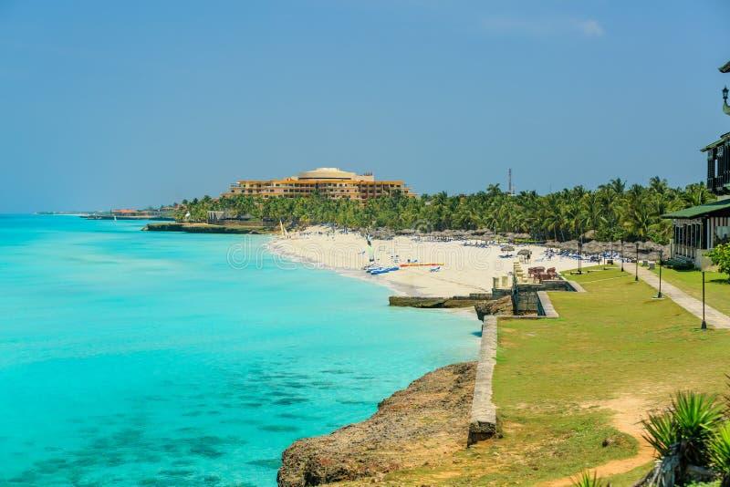 平静的海洋,华美的白色沙子棕榈滩迷人的大开看法  免版税图库摄影