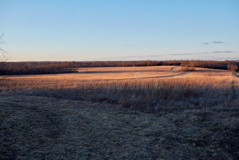 平静的自然室外农田环境 库存照片