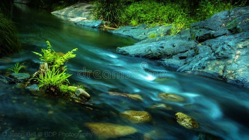 平静的辗压小河西北的布里斯班 库存照片