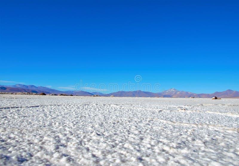 平Maricunga的盐 库存照片