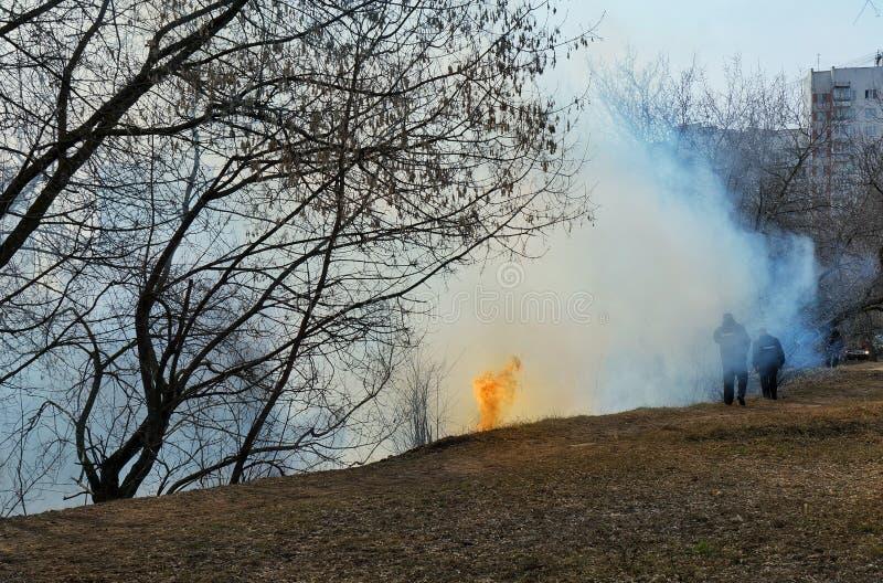 04 04 2019年俄罗斯,莫斯科 火在森林里,干草燃烧,浓烟 免版税库存照片