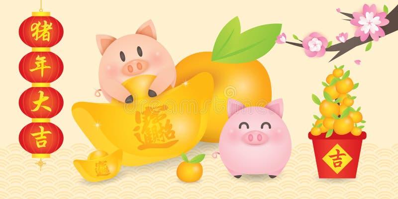 2019年农历新年,年与逗人喜爱贪心的猪传染媒介与灯笼对联、金锭、蜜桔和开花树 Transla 向量例证