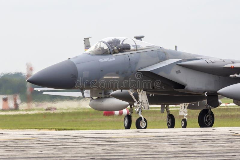 2018年密歇根雷电航展F-15鹰 免版税图库摄影