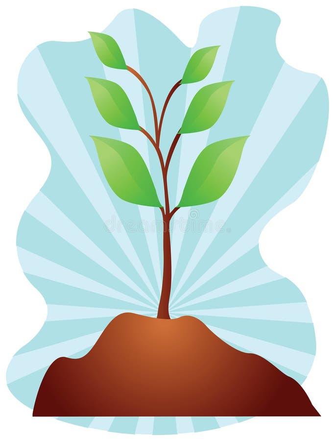 年幼植物例证 库存图片