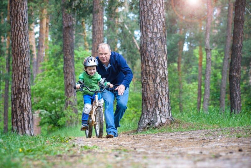 3年的小孩男孩和他的父亲在有a的秋天森林里 免版税库存图片