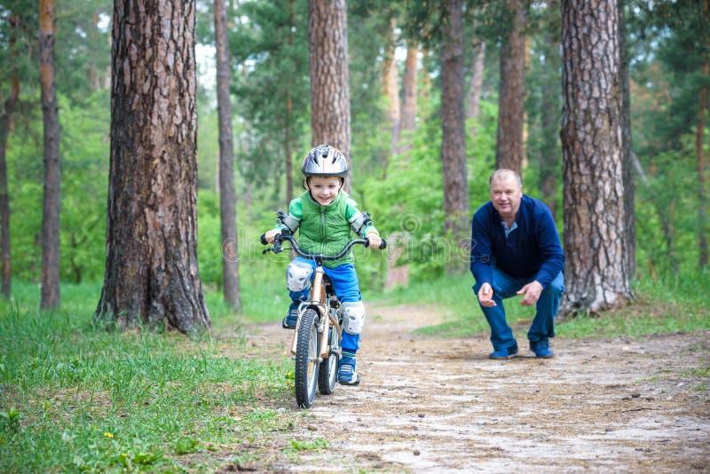 3年的小孩男孩和他的父亲在有a的秋天森林里 库存图片
