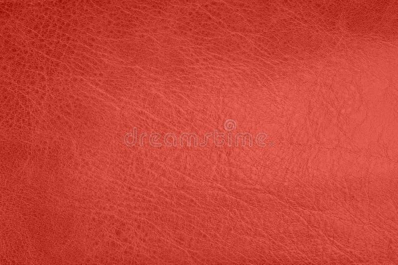 年的居住的珊瑚颜色2019年 皮革纹理背景,真皮 图库摄影