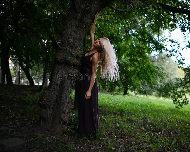 年轻亭亭玉立的妇女站立在大树下并且在公园放松 免版税库存图片