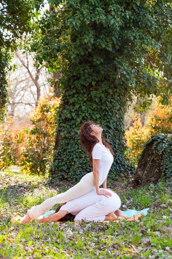 年轻人和妇女实践伙伴瑜伽室外在木夏日 库存图片
