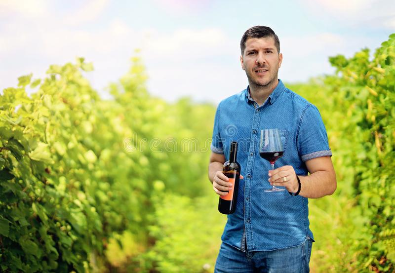 年轻人在有玻璃和一个瓶的葡萄园里红酒在他的手上 享受收割期的人在农场 图库摄影