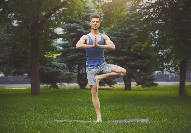 年轻人在树的训练瑜伽摆在得户外 免版税图库摄影