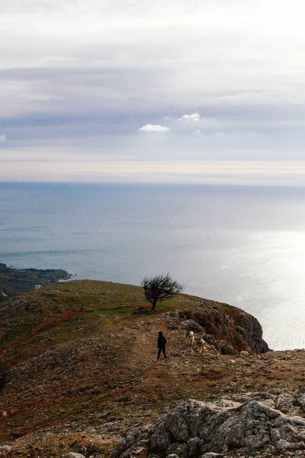 年轻人在秋天山的峭壁站立了并且享受自然看法  免版税库存图片