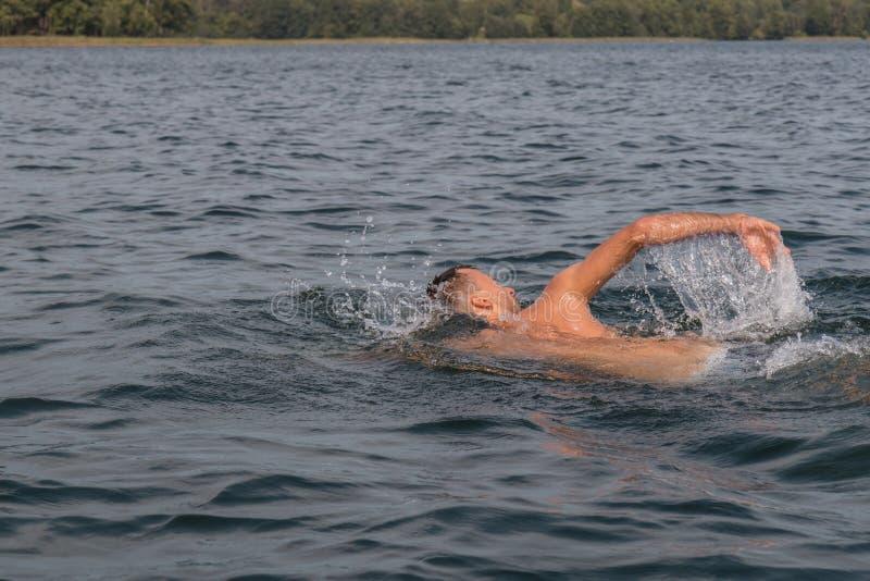 年轻人游泳在湖 库存照片