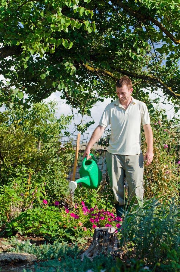 年轻人花匠浇灌的花在庭院里 免版税库存照片