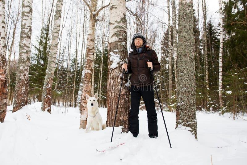 年轻人速度滑雪在有白色狗的森林里 免版税库存照片