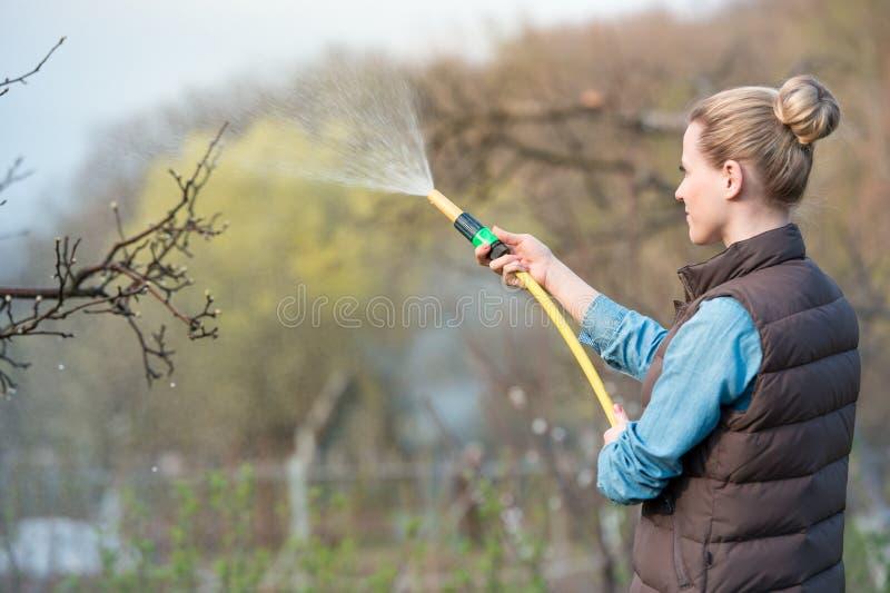 年轻俏丽的有喷水隆头的,关闭妇女浇灌的庭院 库存照片