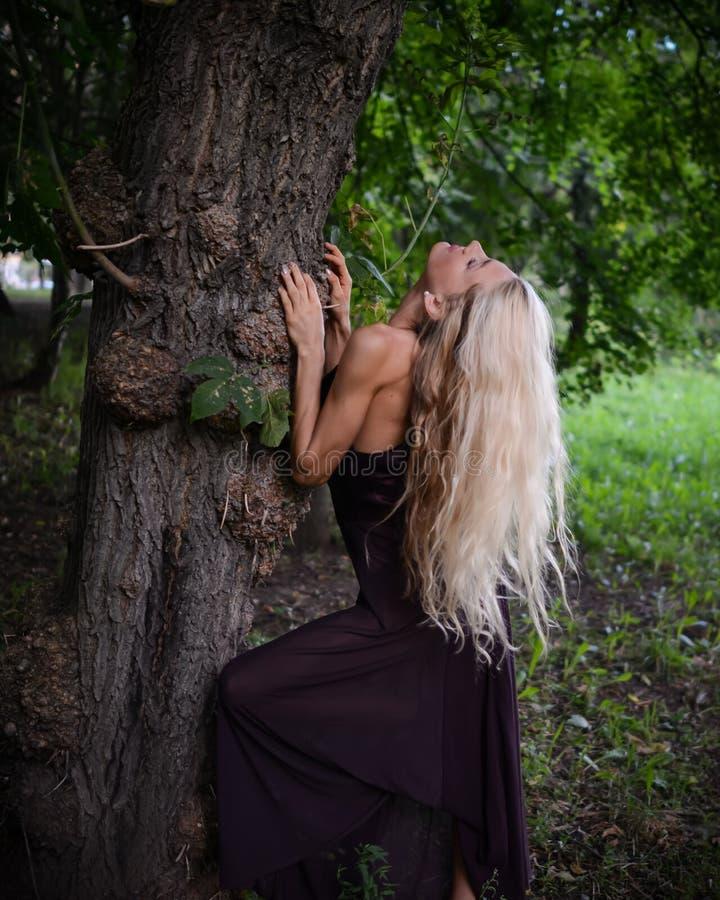 年轻匀称妇女站立在大树下并且在公园放松 免版税库存照片