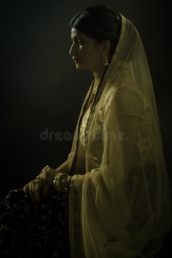年轻印地安夫人供以座位的画象  免版税库存照片