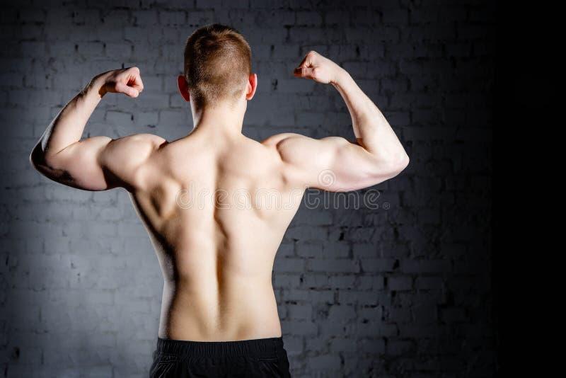 年轻可爱的白种人肌肉爱好健美者人背面图有解决在体育中心的完善的身体的 免版税库存图片