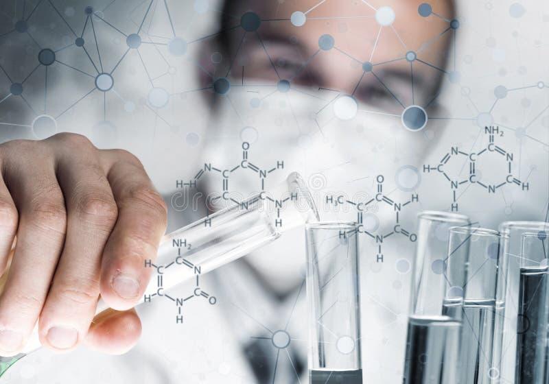 年轻在玻璃烧瓶的科学家混合的试剂在临床实验室 库存照片