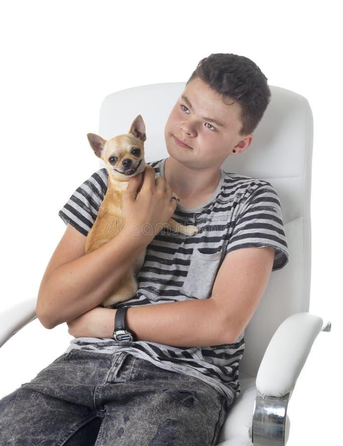 年轻奇瓦瓦狗和青少年 免版税库存图片