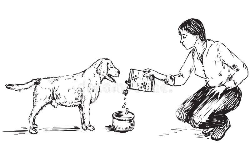 年轻女人哺养的狗拉布拉多 皇族释放例证