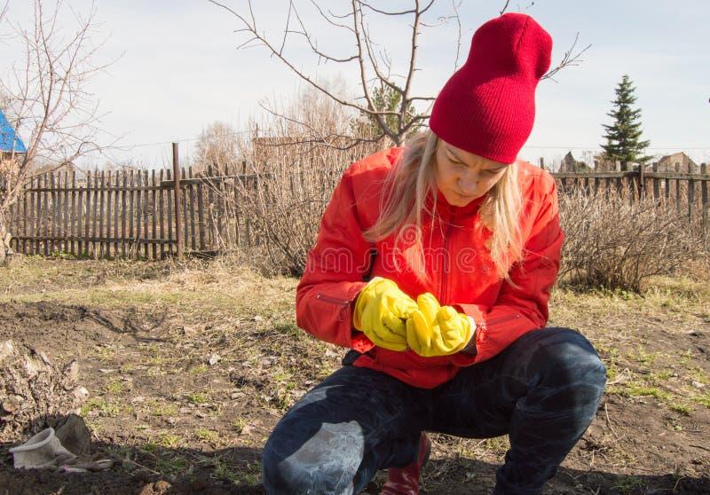 年轻女人在种植认真地检查种子在土壤前在庭院里在一个春日 免版税库存图片